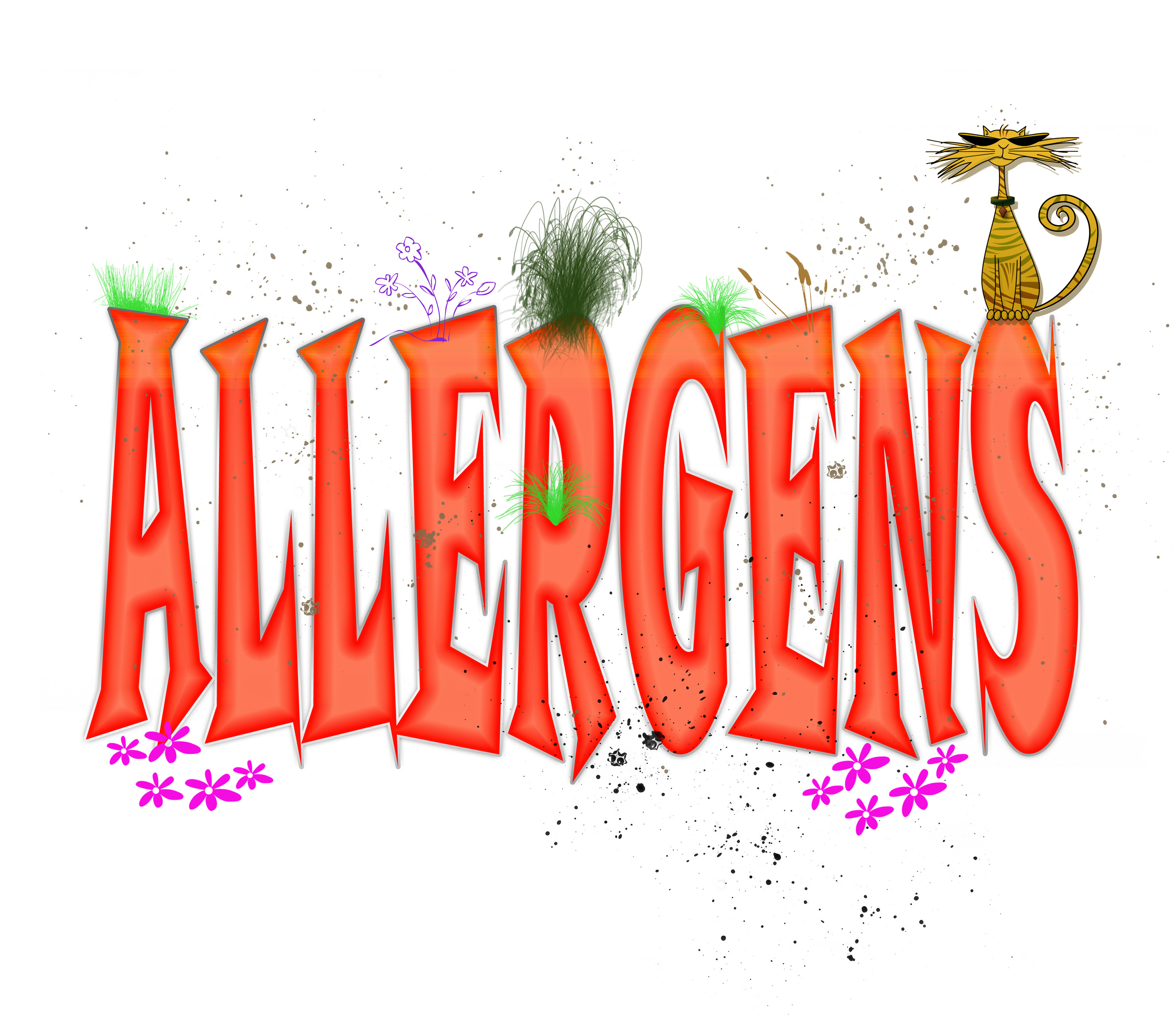 Quick Allergy Relief - All Odors Gone | Guaranteed Odor Removal