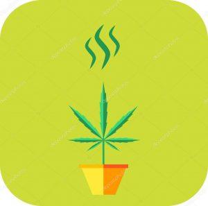 Marijuana Smoke Odor Elimination